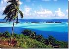jimaさんの南の島